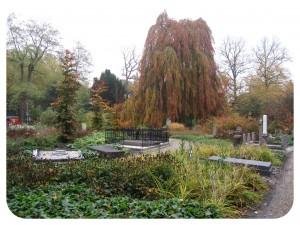Begraafplaats Soestbergen